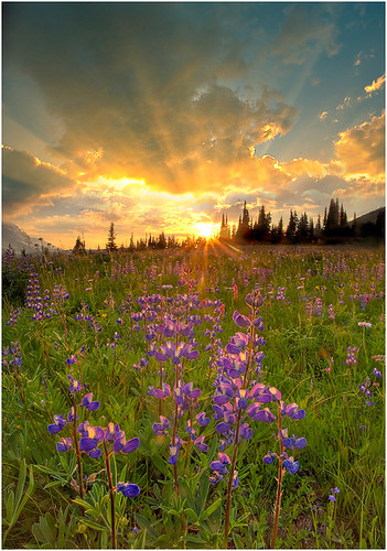 Sunburst On Rainer | by kevin mcneal