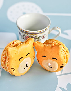Kitty Cat Macarons | by raspberri cupcakes