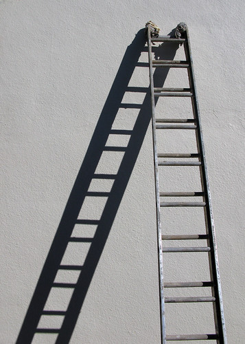 up and down the ladder | by ** RCB **