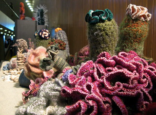 hyperbolic crocheted coral reef | by jurvetson