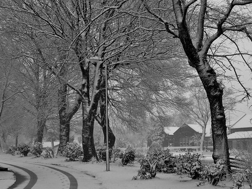 Snow in Rossendale, Lancashire, England - January 2009 | by SaffyH