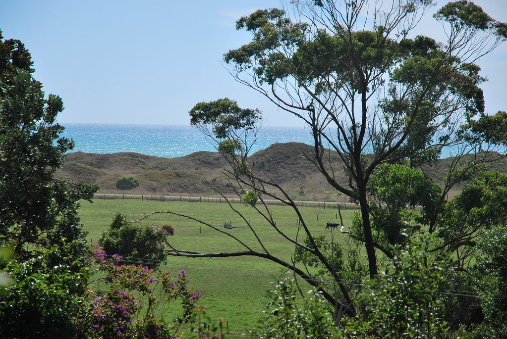 Opotiki - East Cape - New Zealand