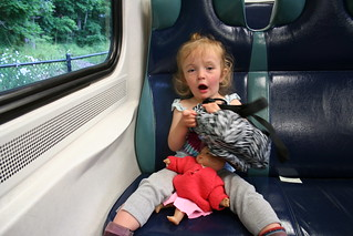 IMG_2531Metro North homeward - 20 hour travel | by crispina ffrench