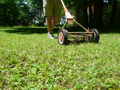 Mowing the Lawn | by SarahMcGowen