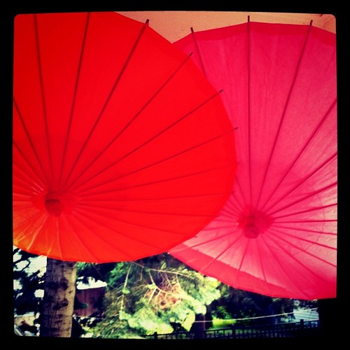 A pair of perfect party parasols... | by MelissaS