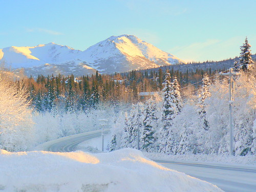 Alaska Anchorage A Winter Sunny Day | by MarculescuEugenIancuD5200Alaska