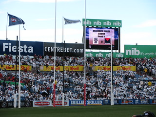 Crowd becomes white at the geelong ground on saturday it