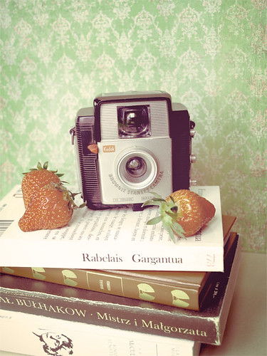 Camera and Strawberries (7/31) (52/365) | by Ula~