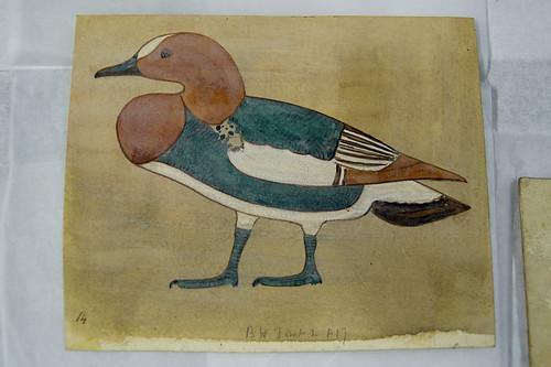 One of Howard Carter's Drawings