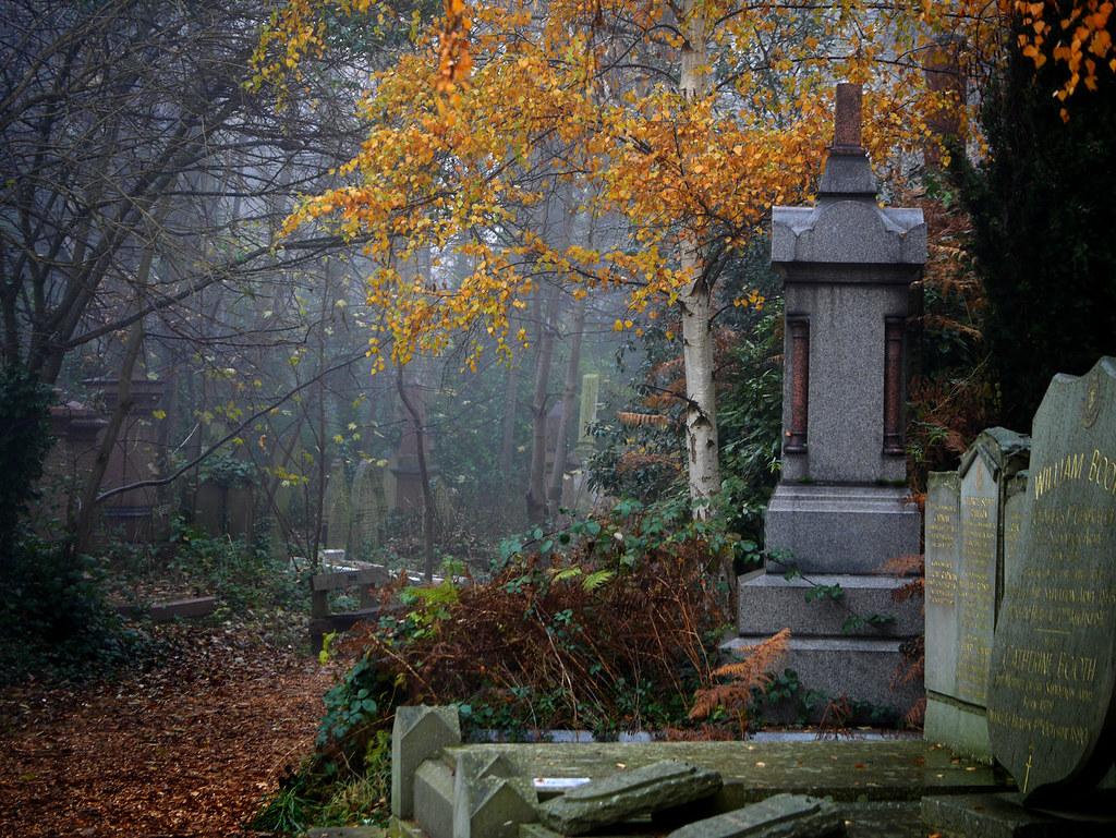 Le cimetière d'Abney Park en automne sous le brouillard. Photo d'Allan Denney.