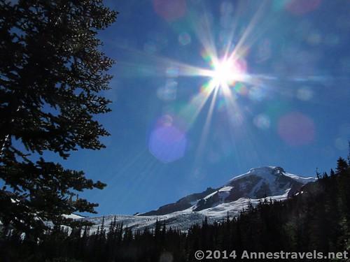 Heliotrope Divide Trail, Mt. Baker Wilderness, Washington