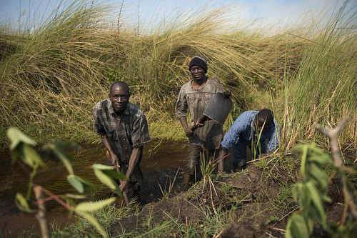 Clearing canal in Zambia. Photo by Anna Fawcus.