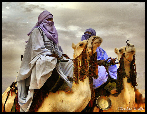 Sahara knight free porn