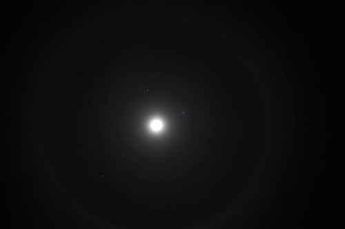 ring around the moon dizzy flickr