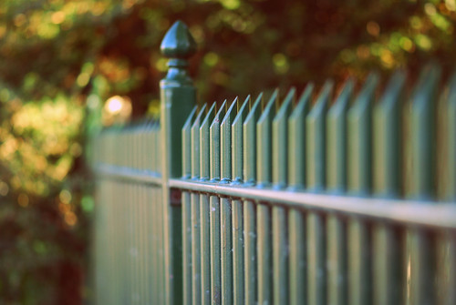 "the ""dare to be different"" fence 