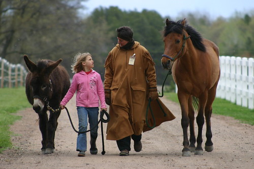 All Things Equine | by Northern Community Radio