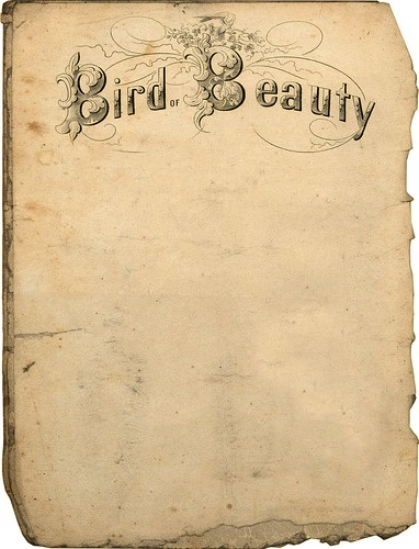 Papier A Lettre Decore Van Gogh