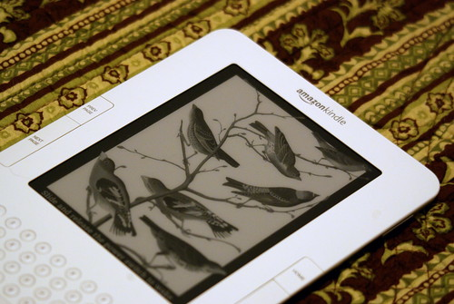Kindle Birdies | by sarowen