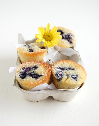 Orange blueberry friands / Friands de laranja e mirtilo | by Patricia Scarpin