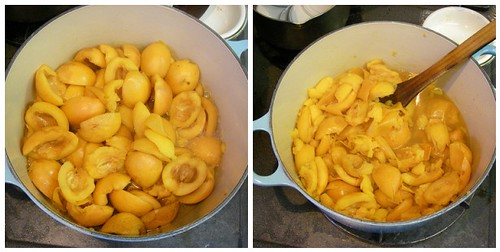 Making Loquat jam | by Blue Lotus
