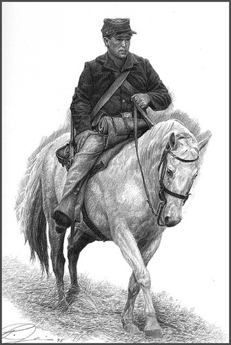 civil war drawings,black and white portraits, pencil drawings of horses | by Paul Jennis
