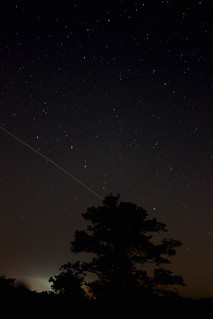 Tree Meteor | by frankpierson