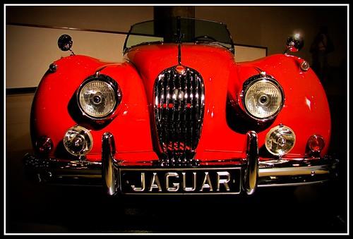American Collectors Car Insurance Reviews
