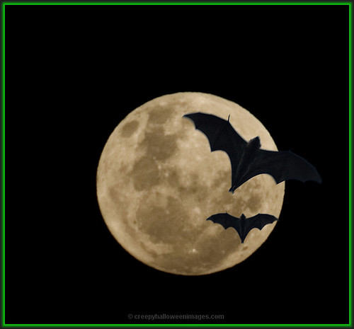 full moon and bats | by creepyhalloweenimages