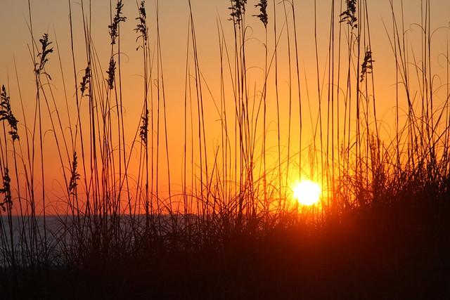 amelia island.. sun rise...