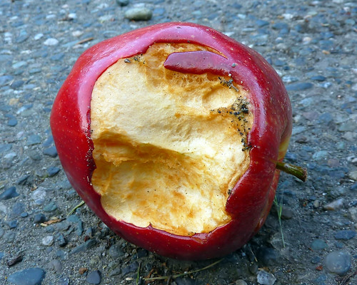 dirty rotten apple 1 | by Lara604