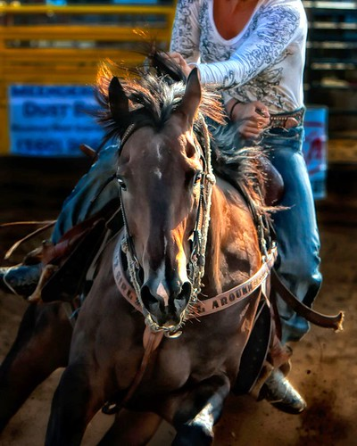 Roping Arena Lights: ...more Barrel Racing _ACD6874w