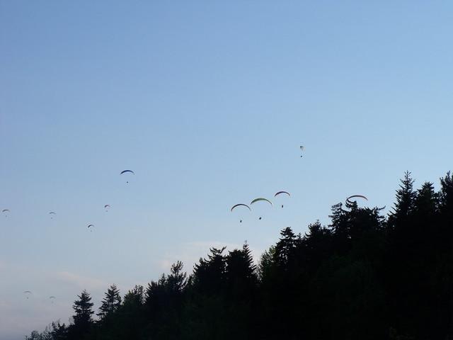 Hohe Wand Bereich Draschgrat Mix 185 m (8-)