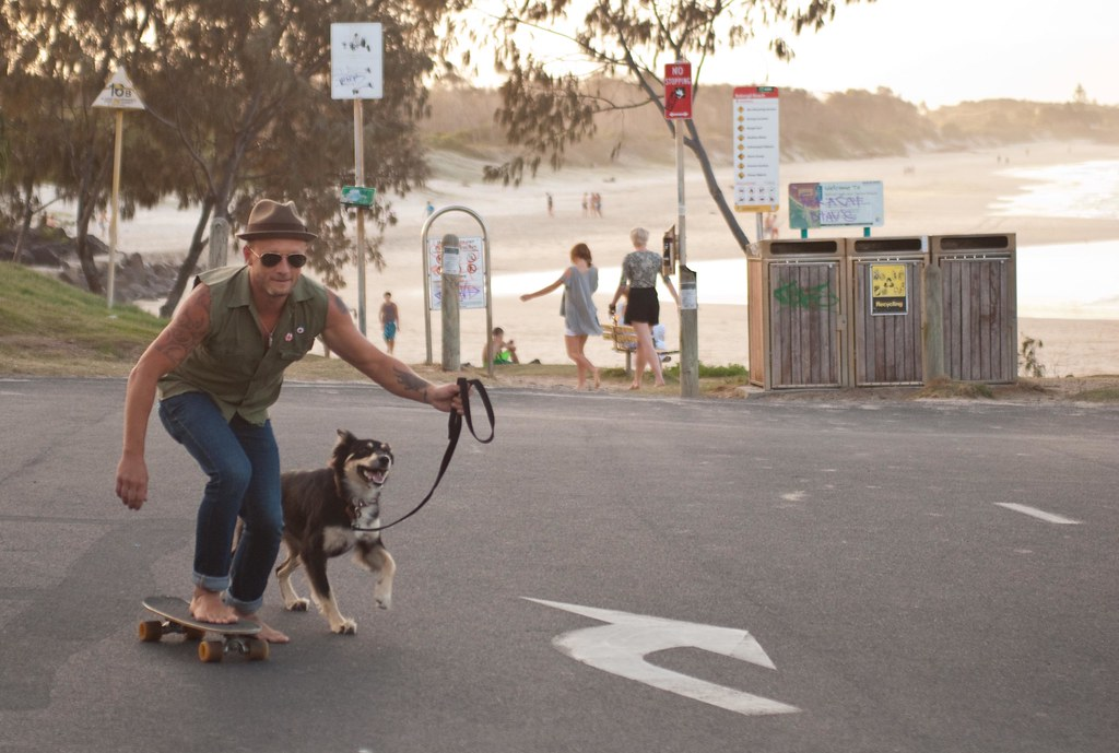 Skaterboy with Dog 2