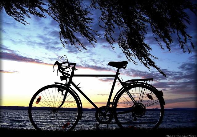 Balaton cycle