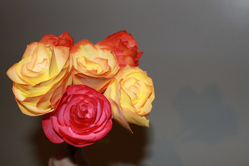 Crafts - Coffee Filter Roses | by Vicky TGAW