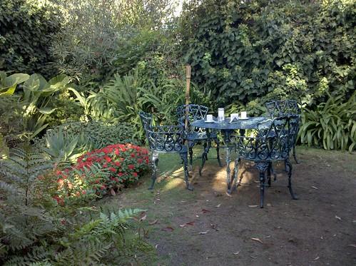 Café en el jardín  Tomando algo en un jardín encontrado ...