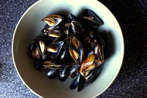 wine-steamed mussels | by smitten kitchen