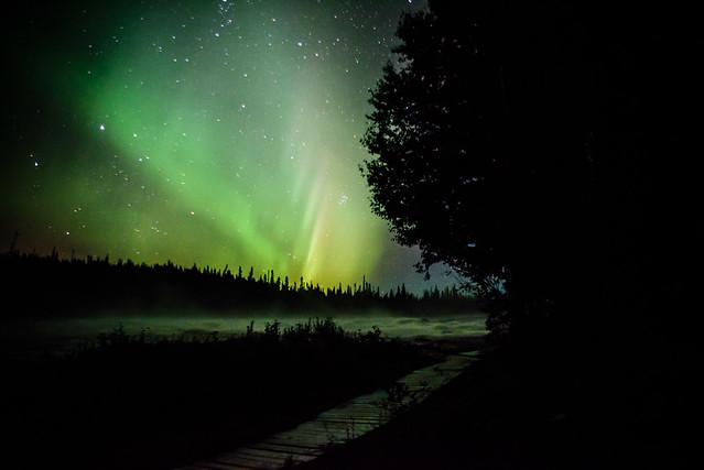 Northern Lights DSC_3416