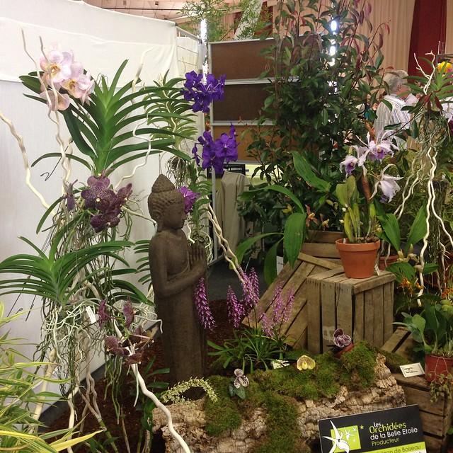 Exposition Nantes (44) - 30 sept - 2 oct 2016 29443773263_a9efc4a982_z