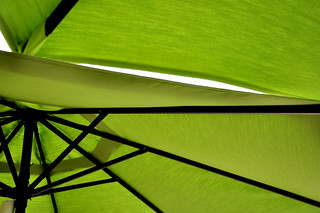 Under the Lime Green Umbrellas | by Denise @ New Mercies I See