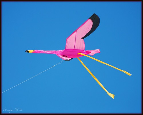 flying flamingoes ii by - photo #15