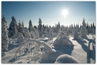 Winter in Finland | by Habub3