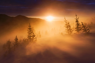 Alpine Light -- Rocky Mountains, CO | by Light of the Wild