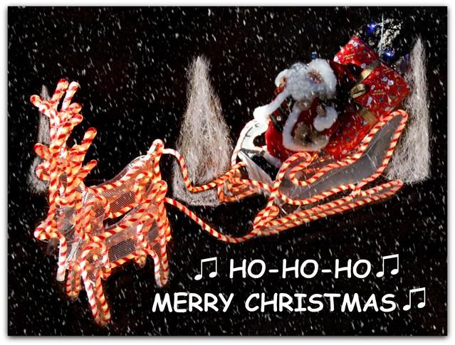 ♫ hohoho ♫ MERRY CHRISTMAS ♫