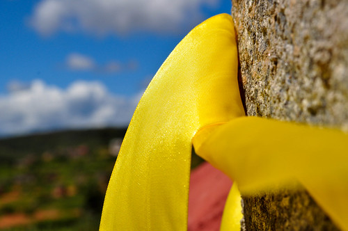 yellow ribbon in the countryside | by S@veOurSm:)e