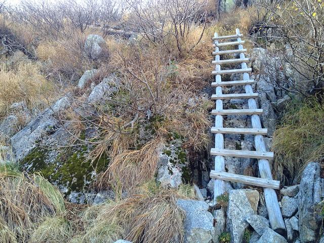 木曽駒ヶ岳 濃ヶ池帰路 木はしご