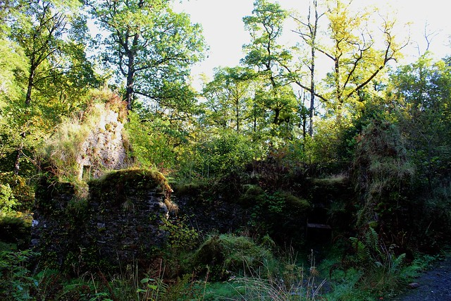 Derelict Water Mill at Ardkinglas, Argyll