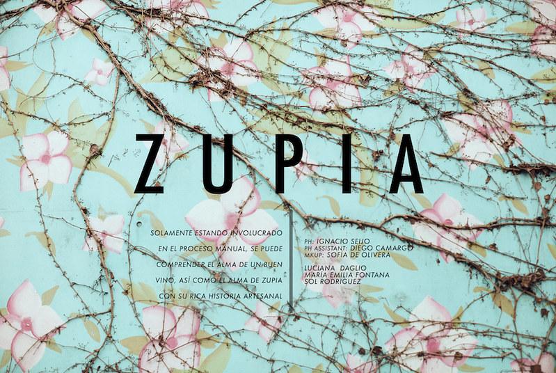 Zupia - Crude