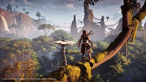 Horizon: Zero Dawn PS4 Pro
