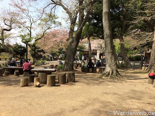 Kamakura (10)